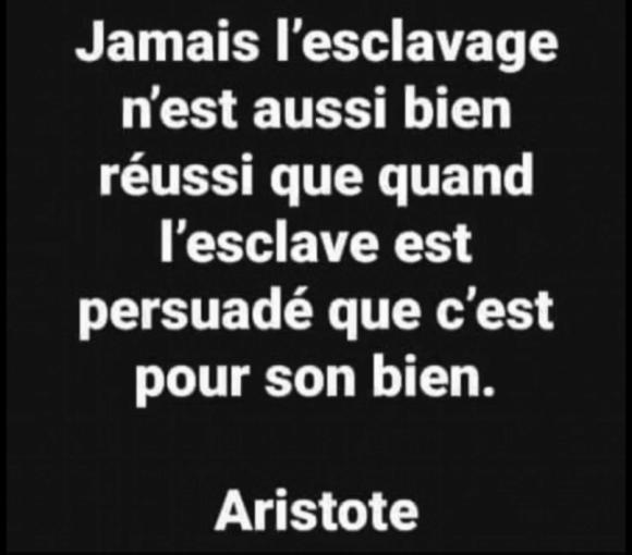 Aristote citation